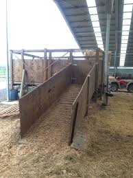 calf holding and loading facilities dairynz