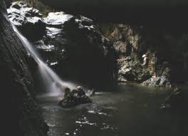 Territorio de los elefantes - Lago Malai Mala Images?q=tbn:ANd9GcTYI5pT9vp7vbHjrIhu3Mjf8hknVrABcAy4we9J6iYF85RADneZ
