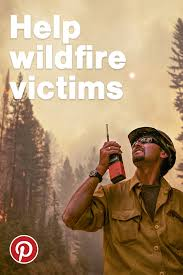 Willow Wildfire California by Volunteers Help Pets Survive Amid California Wildfires U2013 In