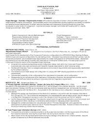 how to write a good resume summary buy original essays online resume professional overview examples resume professional summary examples examples of professional resume examples for sales executive example good resume template
