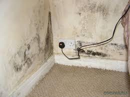 Как избавиться от влажности в квартире?