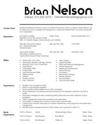 Combination Resume Format How To Construct A Resume 1 Sample Combination Resume Uxhandy Com
