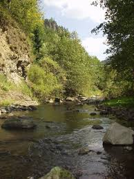 Bistrița River