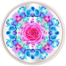 ultraviolet pink and icy blue no 1 louis daniel klibansky rize