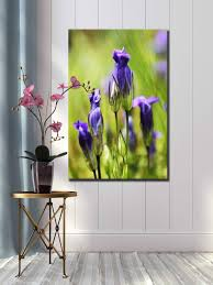 Baby Home Decor Purple Green Wildflower Nature Photograph Large Canvas Print 24 X