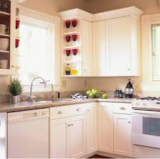 Kitchen Cabinet Refinishing Kits Outdoor Kitchen Cabinet Kits Magnificent With Cabinets Images