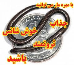عقیق یمن