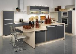 Minimalist Kitchen Cabinets by Kitchen Minimalist Kitchen Cabinet With Lighting With Small