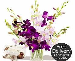 Flowers Delivered Uk - the 25 best flowers delivered uk ideas on pinterest flowers