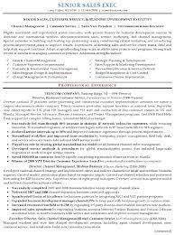 Imagerackus Engaging Resume Sample Senior Sales Executive Resume Careerresumes With Divine Resume Sample Senior Sales Executive