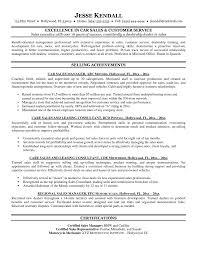 Executive Summary Resume Example Template Executive Director Resume Sample Template Examples