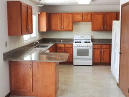 furniture marvelous reface kitchen cabinets light brown wooden