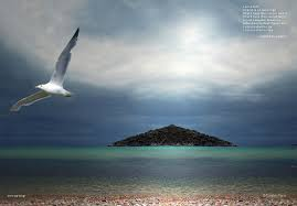 Iphone Cannot Take Photo Seagull Tag Wallpapers Ocean Sky Seagull Rock Blue Bird Beach