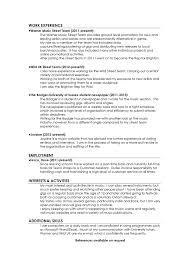 Professional Curriculum Vitae CV Sample