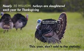 thanksgiving reason for its celebration 50 million reasons to not eat turkey this thanksgiving one green