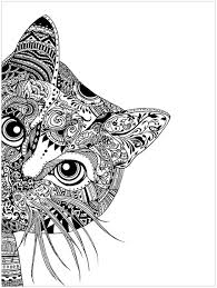 pages cat head animals coloring pages for adults justcolor