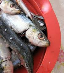 Eating Eyeballs  A Sample College Admissions Essay About com  College Admissions Sardines   jbarreiros   Flickr