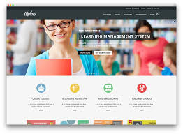 Best BuddyPress WordPress Themes for Community Sites        Colorlib