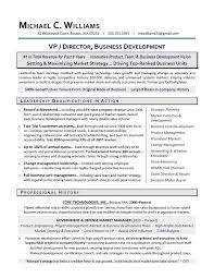 VP Business Development Sample Resume   Executive Resume Writing     An Expert Resume