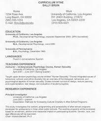 example resume dubai soymujer co Professional Curriculum Vitae