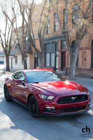 25 best red mustang ideas on pinterest mustang cars black