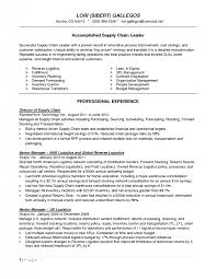Inventory Specialist Resume Sample by Inventory Control Analyst Resume Objective Solomei Com