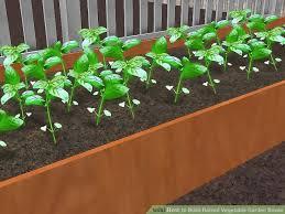 how to build a raised vegetable garden gardening ideas
