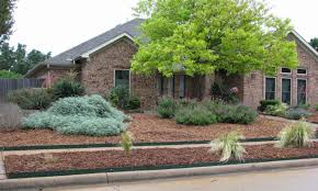 Front Garden Design Ideas Low Maintenance Succulent Landscaping Grassless Front Yard Low Maintenance Find