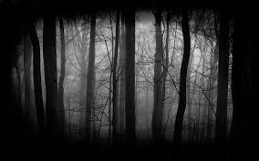scary moon background background dark creepy forest dark forest background 344 dark