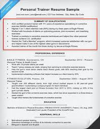 Resume Summary Examples Customer Service by Examples Of Summary For Resume 12 Resume Summary Statement