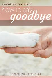 19 best pet loss images on pinterest pet loss animal quotes and