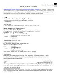 sample resume simple resume activities section free resume example and writing download 79 amazing basic resume format examples of resumes