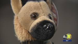 belgian shepherd stuffed animal stuffed k 9 dogs a hit in clovis police fundraiser abc30 com