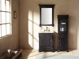 Discount Bathroom Cabinets And Vanities by Bathroom Vanities Cheap Vanity Cabinets For Bathrooms Awesome