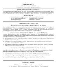 Tax Accountant Sample Resume by Consultant Resume Template Consulting Resume Sample