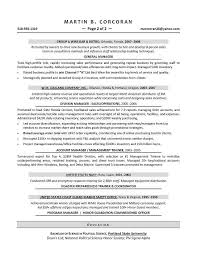 Best Tech Resume by Sales Executive And Hi Tech And Resume