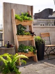 Vertical Garden Vegetables by Farmer D 3 Tier Vertical Wall Garden Rustic Ladder Planting And
