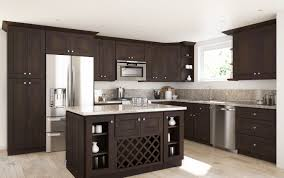 Ready Kitchen Cabinets by Coffee Shaker Ready To Assemble Kitchen Cabinets Kitchen Cabinets