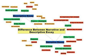 term paper vs essay