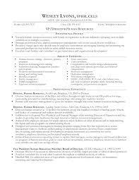 Recruiter Consultant Resume It Resume Resume Cv Cover Letter