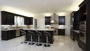 Kitchen Cabinets Inside Home Design 89 Surprising Dark Wood Kitchen Cabinetss