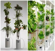 5 factors to consider to set up an indoor garden u2013 interior design