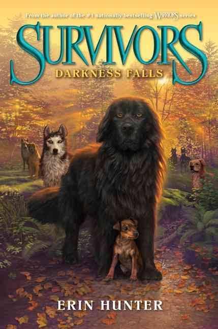 Darkness falls /