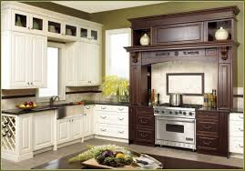 Ready Made Kitchen Cabinet by Pre Made Kitchen Cabinets Splendid 7 Kitchen Ready Hbe Kitchen
