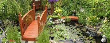 kodama koi garden fish u0026 pond supplies fl ny nj
