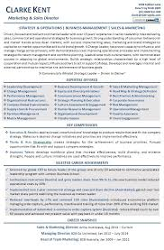 Ecommerce Resume Sample by Executive Resume Examples