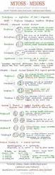 best 25 physics notes ideas on pinterest physics revision
