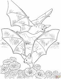 Halloween Preschool Printables Bat Coloring Page Coloring Page Free Printable Pages Skeleton With