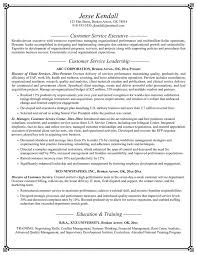 Customer Services Resume Sample by 54 Best Resume Templates Download Images On Pinterest Resume