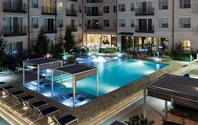 american pitbull terrier for sale in dallas texas vv u0026m apartments for rent